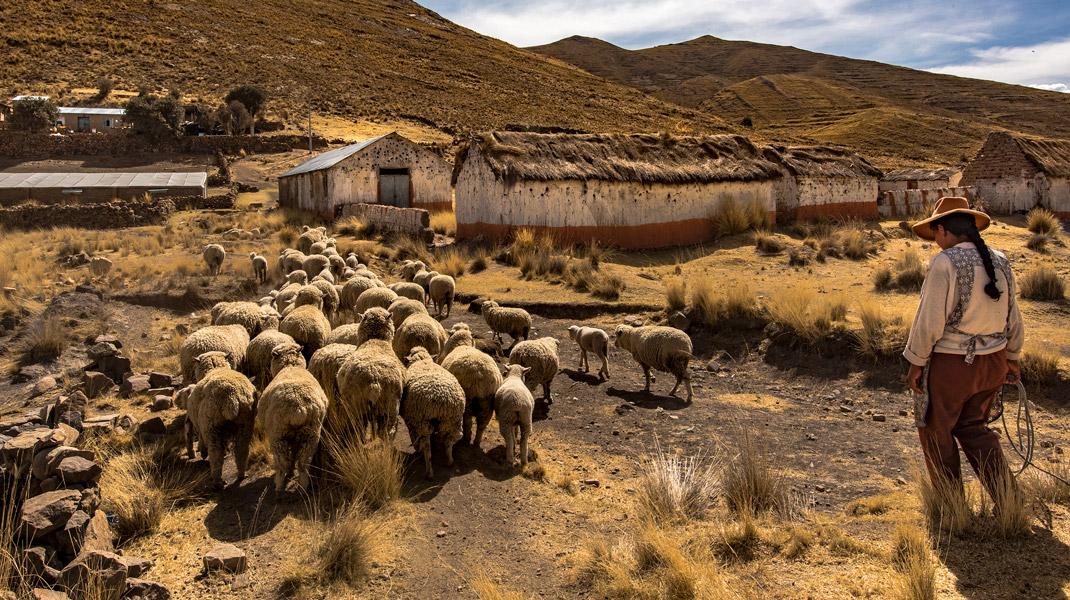 Morgana Vargas Llosa<br /> retrata al Perú que no se rinde